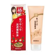 YANAGIYA TSUBAKI chan | Hair Treatment | TSUYATSUYA Shiny Hair Lotion 120g
