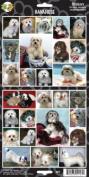 Pet Qwerks S25 Havanese Dog Sticker