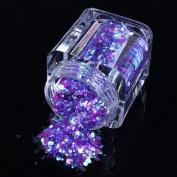 ECBASKET 1 Jar New Arrival Glizty Nail Powder Dust DIY Nail Glitter Slices # Purple